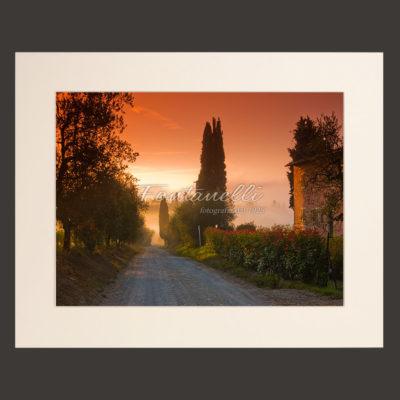 Tuscany landscape picture for sale #5