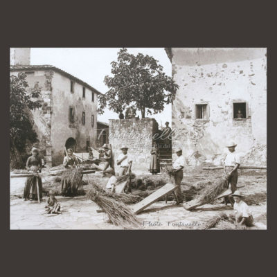 historic picture san gimignano tuscany black and white 66