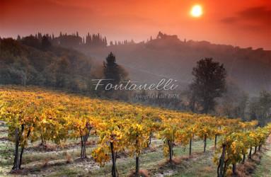 foto fontanelli campagna toscana