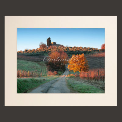 tuscany chianti region landscape white picture for sale 8