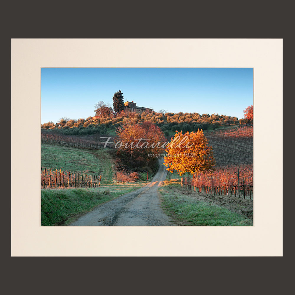 tuscany chianti region landscape white picture for sale 8