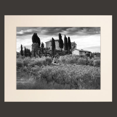 tuscany chianti region landscape black and white