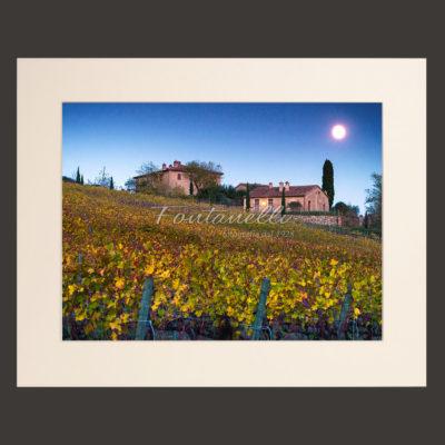 tuscany landscape vineyards
