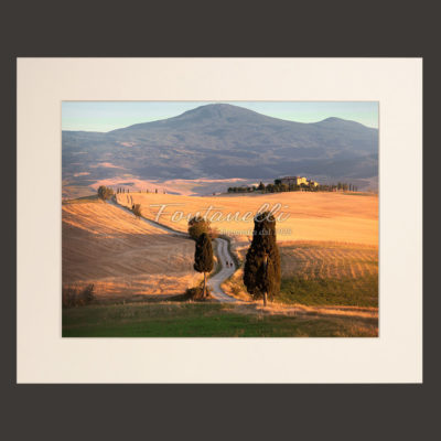 Tuscany landscape picture for sale #1