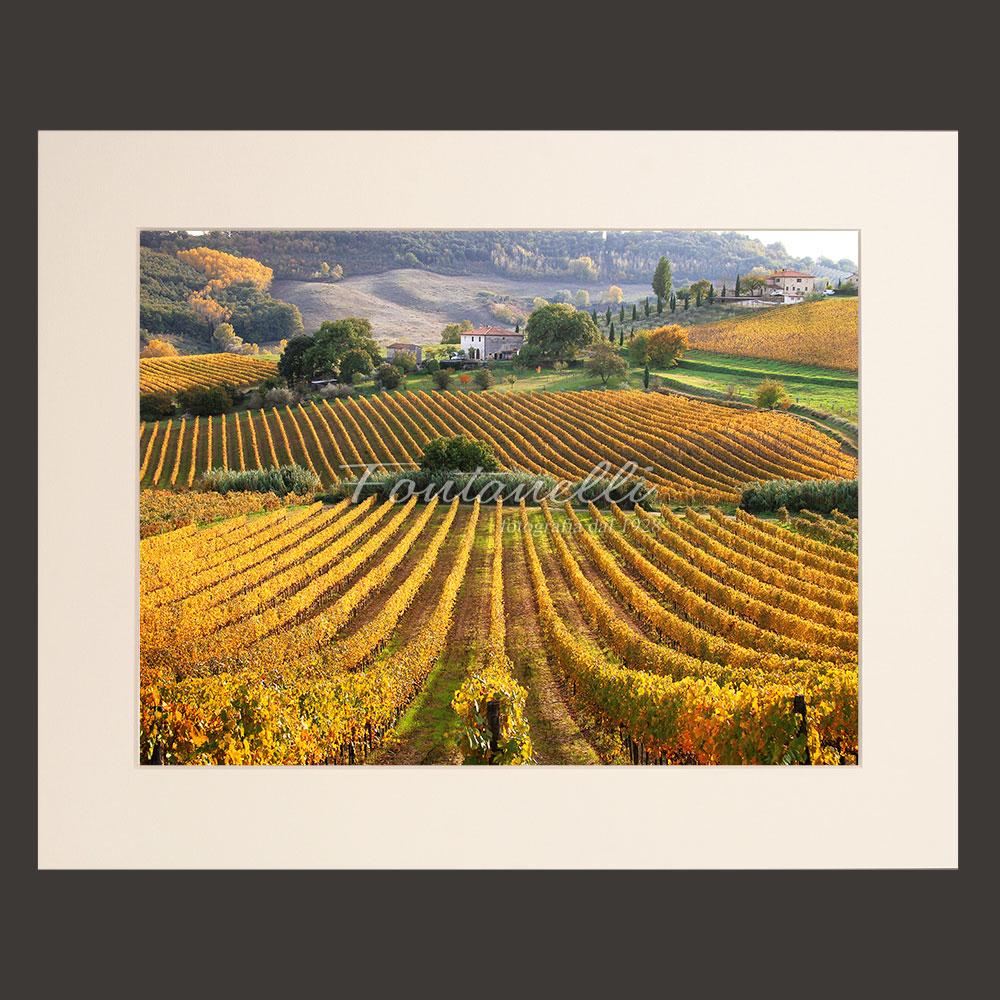 tuscany landscape picture for sale passepartout 31