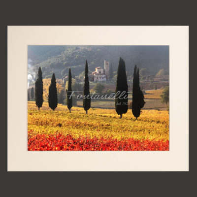 tuscany landscape picture for sale passepartout 29