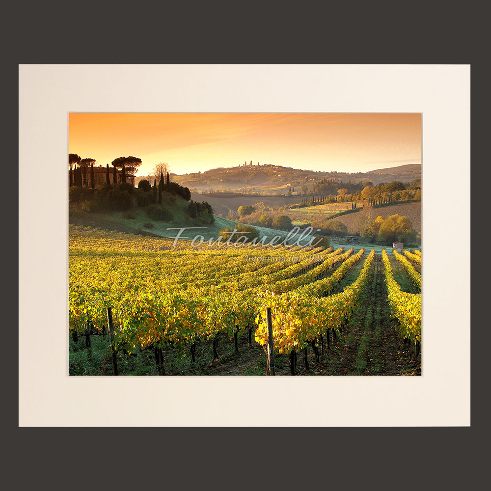 tuscany landscape vineyards picture for sale passepartout 18