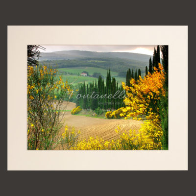 tuscany landscape picture for sale passepartout 11
