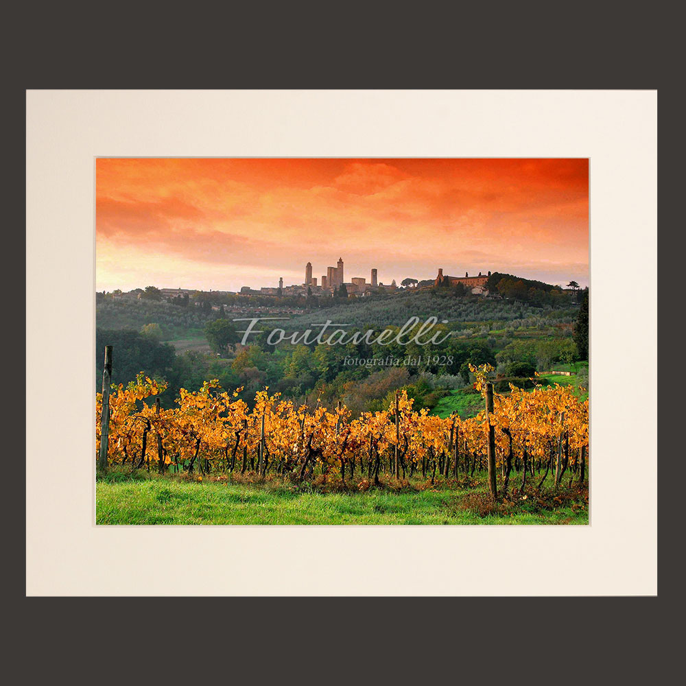 tuscany landscape vineyards picture for sale passepartout 3