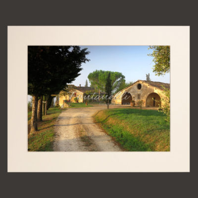 Tuscany landscape picture