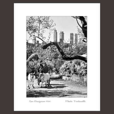 historic picture san gimignano tuscany black and white 33