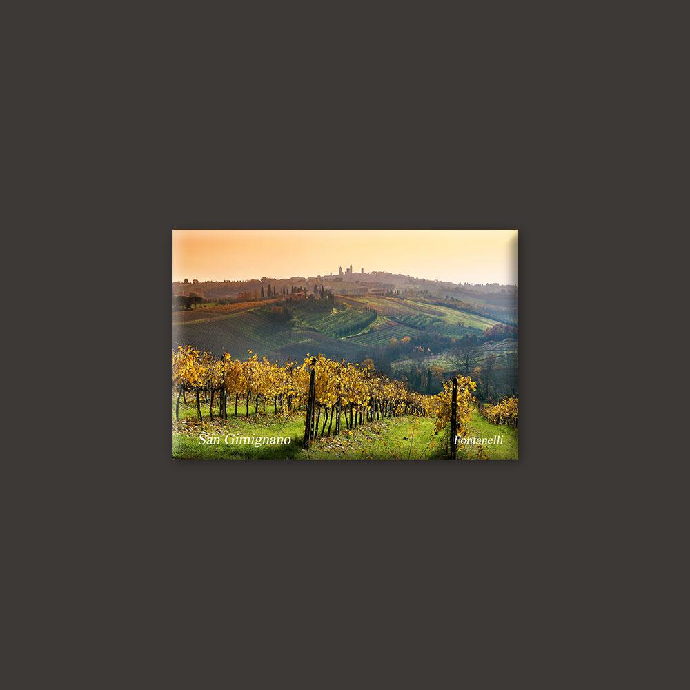 tuscany vineyards magnet