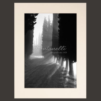 Tuscany black and white picture for sale
