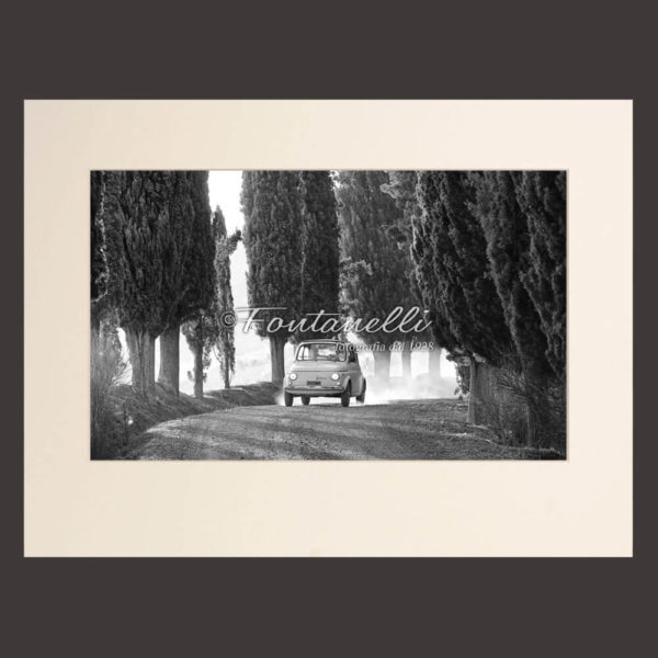 Foto bianco e nero di Fiat 500 in strada di cipressi ,San Gimignano Toscana