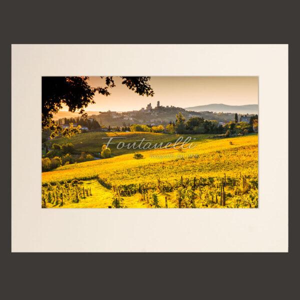 Campi di vigne autunnali con San Gimignano nello sfondo. Toscana