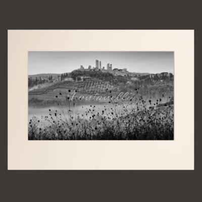 San Gimignano e fiori secchi, Toscana